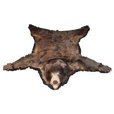 20th c Color Phase North American Black Bear Skin Rug