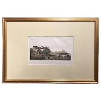 John James Audubon Hand Colored Engraving, Shore Lark (Horned Lark) 1831