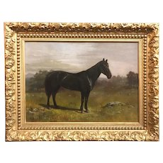 19th Century American School Oil Painting Portrait of a Black Horse
