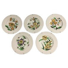 5 English Soft Paste Dinner Plates by Cauldon with Botanical Designs