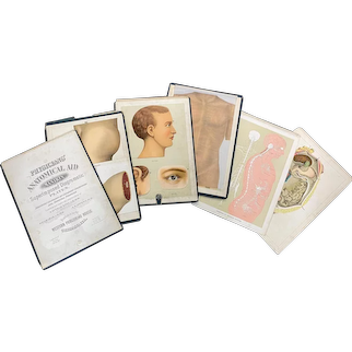 1888 Physician's Anatomical Aid Lithograph Portfolio by Knox, Graham, and Owens