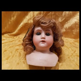 Antique Bisque Mabel Doll Head