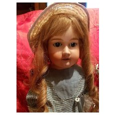 Antique Bisque Rosebud Doll Antique Dress