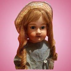 Antique Bisque Rosebud Doll Antique Dress