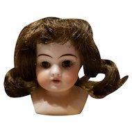 Miniature Antique Bisque Kestner Doll Head