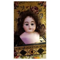 Antique Bisque 1894  Armand Marseille Doll Head