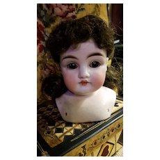 Antique Bisque Alphabet Kestner Doll Head