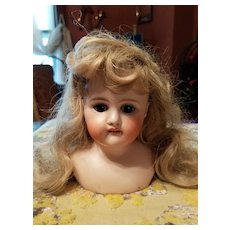 Antique Bisque Lady Head as is