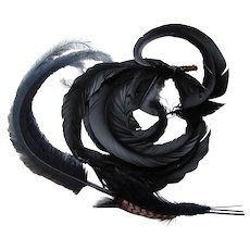 Vintage Millinery Feathers Six Curved Black Coq Feathers for Hats or Projects Free Shipping in USA