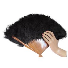 Black Ostrich Feather Fan for Display