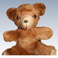 Vintage Teddy Bear Bell in Right Ear
