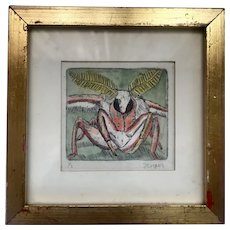 An Entomology Etching of a Fly Signed Limited Edition