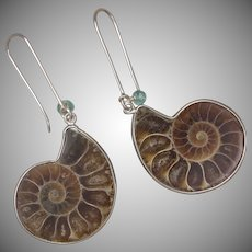 Ammonite and Apatite Earrings