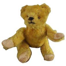 Small Gold Bear