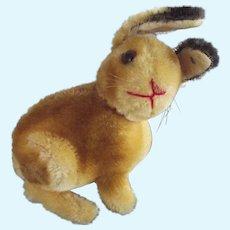 Steiff Sonny Rabbit Early One