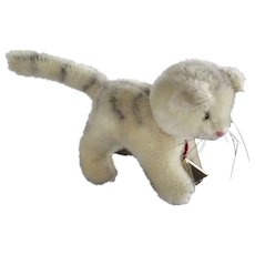 Small Hermann Cat With Neck Tag