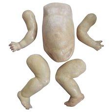 German Baby Body