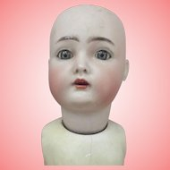 K*R Walker Doll As Is