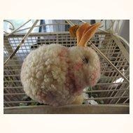 Large Steiff Pom Pom Rabbit
