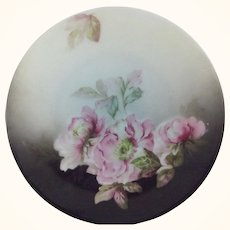 Small Silesia Plate With Roses