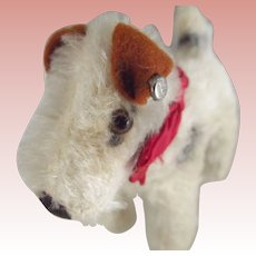 Steiff Foxy Fox Terrier, Original Bow and Bell, Button