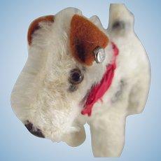 Steiff Foxy Fox Terrier, Original Bow and Bell, Button