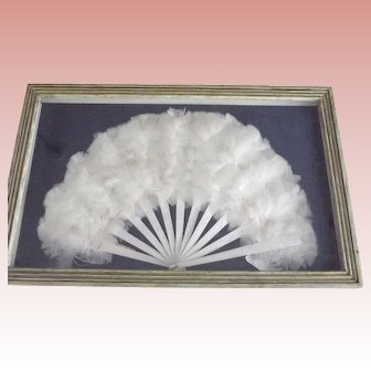Framed Feather Fan In Shadow Frame
