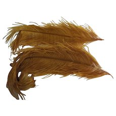 Pair of Large Feathers