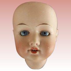Herm Steiner  Bisque Head