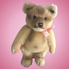 Steiff Jackie Bear