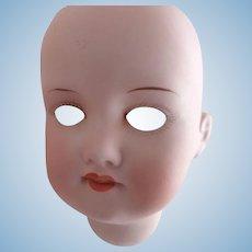 A.M. 390n  Doll Head