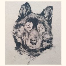 Etching by R.L. Boyer of Dog
