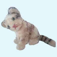 Early Mohair Cat