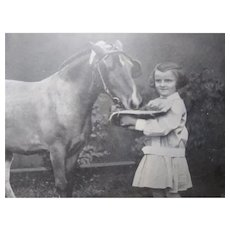 Large  Photo of A Young Girl Feeding a Horse