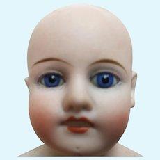 Blue Eyed Shoulderhead Doll Head Only