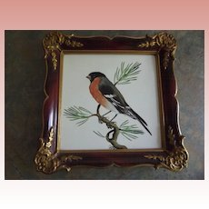 Rosenthal Picture of A Robin