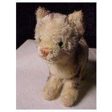 Early Stuffed Cat