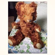 """Sweet Little """"Character"""" Red Bear"""