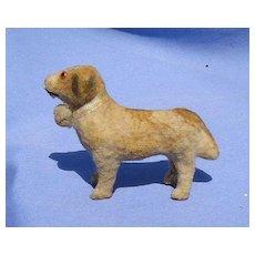 antique St Bernard Carlin putz salon dog Germany French fashion doll