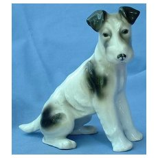 1930 Jack Russell / Wire Fox Terrier Schnauzer dog Gotha Pfeffer Germany 6""