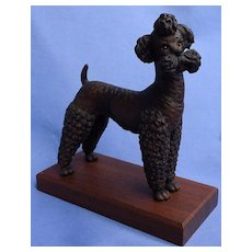 """Anri black POODLE dog Italy 6"""""""
