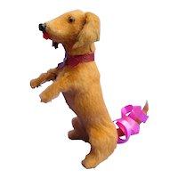 """Antique Dachshund begging salon dog Kestner Jumeau French fashion doll companion Germany label 3"""""""