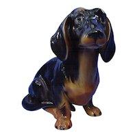 "12"" black tan Dachshund dog Austria"