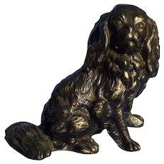 bronze Cavalier King Charles spaniel Austria dog