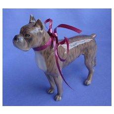 "Brindle Boxer male dog Denmark 7"""