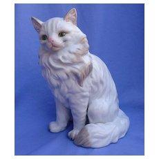 "10"" Angora Persian cat Museo"