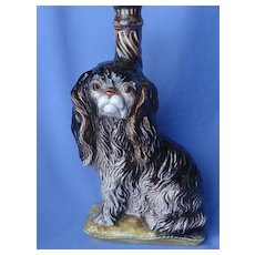 Cavalier King Charles spaniel dog bottle from Italy 10""
