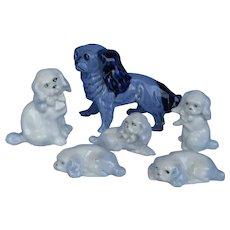 Cavalier King Charles Spaniel family 6 Germany dogs