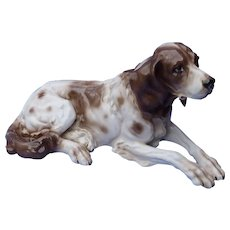 "15"" English Setter Springer spaniel German pointer Czechoslovakia hunting dog"