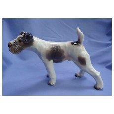 """Dahl Jensen Fox Terrier Schnauzer Denmark dog 9"""""""